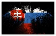 Slovakia's picture