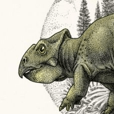 ferrisaurus's picture
