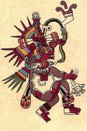 Imagen de xaratanga