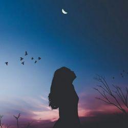 Εικόνα Luna Moon