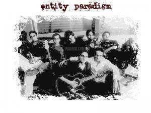 Entity Paradigm