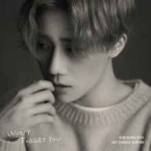 Kim Sung Kyu || Won't Forget You