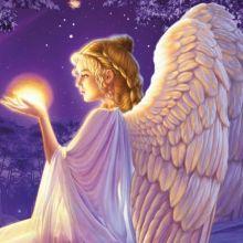Angels Vol. 5