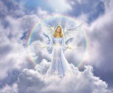Angels Vol. 6