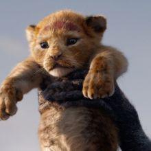 The Lion King (2019): 'Circle of Life/Nants ingonyama'