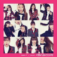 Apink || Pink Blossom