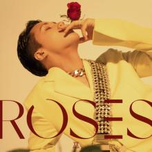 RAVI: ROSES