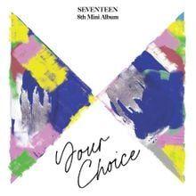 SEVENTEEN || Your Choice