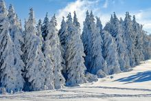 Songs About Winter