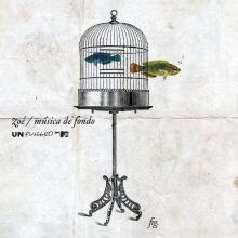 Zoé | MTV Unplugged: Música de Fondo (2011)